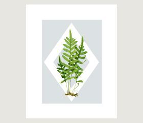 Vintage Botanical illustrations Meet Modern Day Cottage Art, Botanical Art Prints, 8x10
