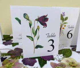 Purple Flower Table Cards, Botanical Floral Table Numbers